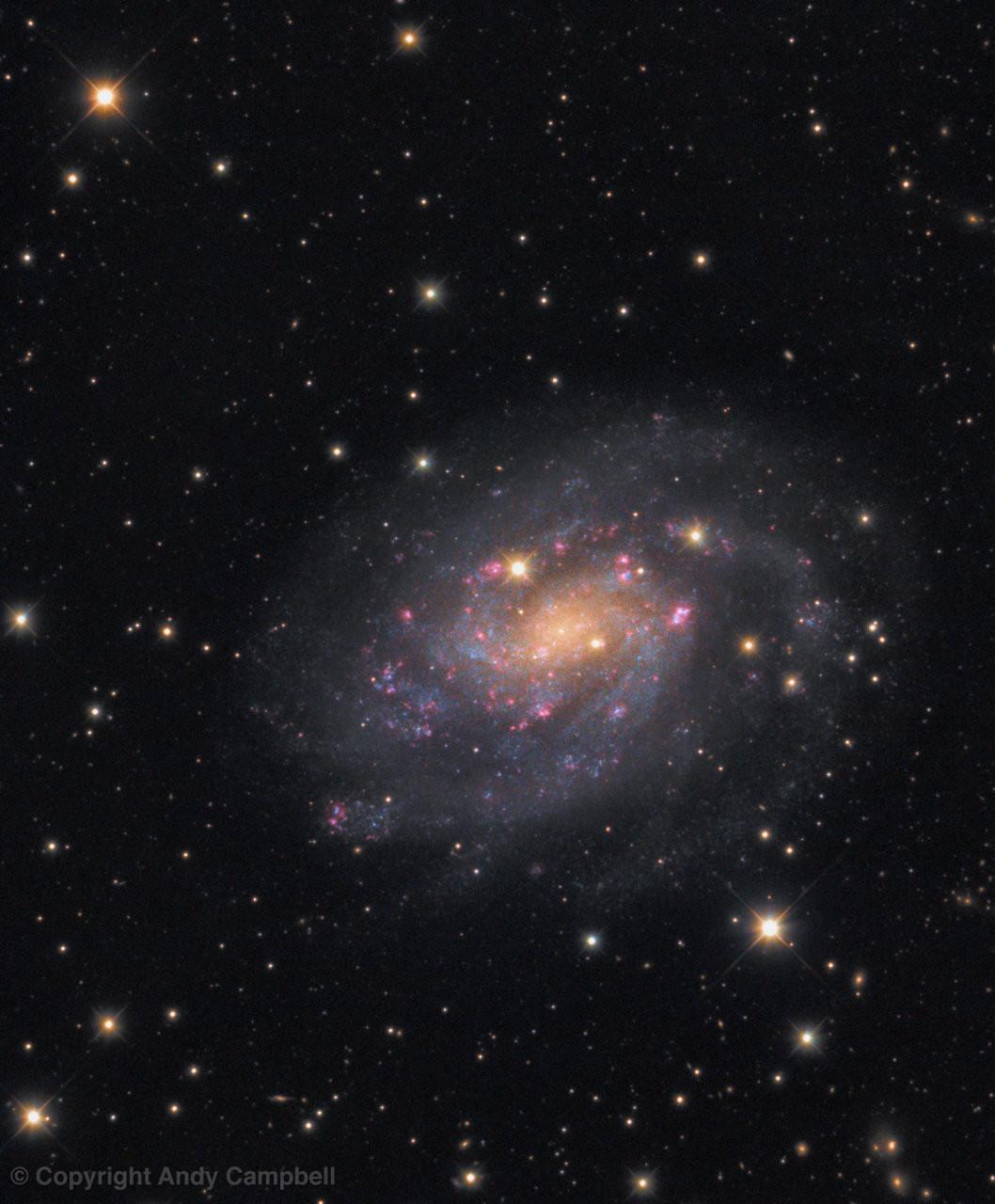 NGC 300 Galaxy in Sculptor
